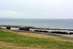 在西部海湾的海岸的Turbidites在冰岛 免版税图库摄影