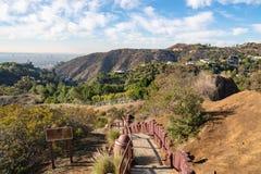 在观察台的台阶好莱坞Hills的 日观察的猫坐温暖晴朗的结构树 在蓝天的美丽的云彩 库存图片