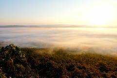 在观点的日出在森林有有雾, Phayao,泰国 免版税图库摄影