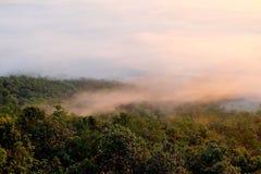 在观点的日出在森林有有雾, Phayao,泰国 免版税库存图片