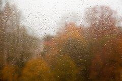 在视窗的雨下落 免版税库存图片
