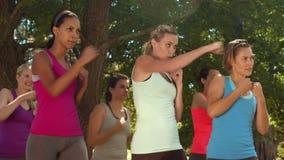 在解决在公园的优质格式健身小组 股票视频