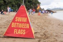 在警告的旗子之间的游泳锥体 免版税库存图片