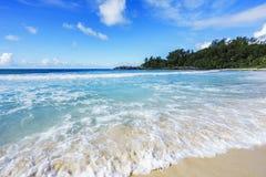 在警察海湾的美丽的天堂海滩,塞舌尔群岛11 免版税库存照片
