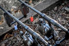 在警报的两根鲤鱼钓鱼竿 图库摄影