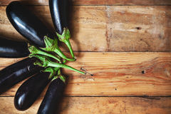 在计划的委员会的六个成熟茄子被堆积的爱好者 库存图片