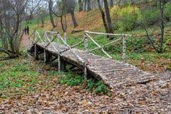 在计数列夫・托尔斯泰庄园的桦树桥梁在Yasnaya Polyana 库存照片