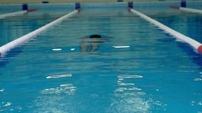 在训练期间,游泳者游泳在水下 股票视频