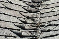 在议院或家的老坏和卷曲的屋顶木瓦 免版税库存图片