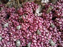 在许多中的新鲜的有机红色青葱葱电灯泡青葱背景在新鲜的超级市场有迷离背景,葱根堆  免版税库存照片