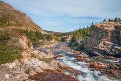 在许多的Swiftcurrent小河冰川地区 冰川国家公园 Mo 免版税库存照片
