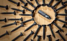 在许多螺丝中的菲氏螺丝刀 库存照片
