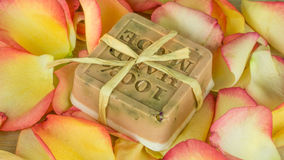 在许多颜色的玫瑰花瓣与一块肥皂 图库摄影