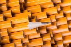 在许多直言中的一支被削尖的铅笔 免版税库存图片