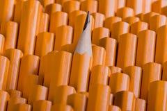 在许多直言中的一支被削尖的铅笔 免版税库存照片