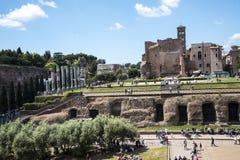 在论坛和罗马被恢复的寺庙金星在罗马 免版税库存照片