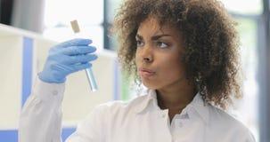 在试管的非裔美国人的科学家妇女研究化学制品谈论实验与同事队在实验室 股票录像