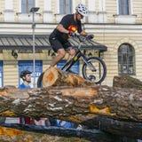 在试验自行车的世界杯 免版税图库摄影
