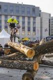 在试验自行车的世界杯 免版税库存图片