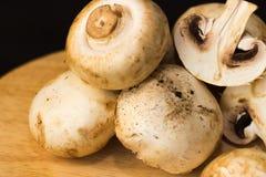 在详细切板黑暗的背景的蘑菇 免版税库存照片