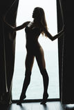 在诱人的美丽的年轻女性剪影的画象  图库摄影