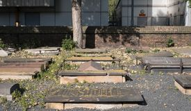 在诺沃公墓,在英里末端的历史的Sephardi犹太坟场的墓碑 青苔和地衣在墓碑增长 免版税图库摄影