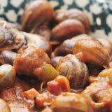 在调味汁的西班牙煮熟的蜗牛 库存图片