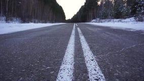 在调查距离的冬天森林Ð ¡ amera的路 股票视频