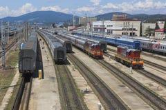 在调车场爱德乐,索契的旅客列车 免版税库存图片