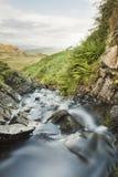在谷下的流动的小河 免版税库存照片
