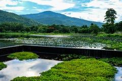 在谷中间的美丽的水库 免版税库存图片