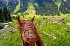 在谷从马后面,吉尔吉斯斯坦的看法 免版税库存图片