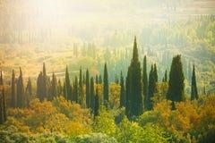 在谷的日落在克罗地亚 库存图片