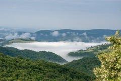 在谷的早晨雾 图库摄影