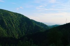 在谷的森林小山顶 库存图片
