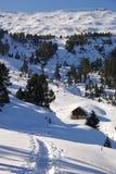 在谷的瑞士瑞士山中的牧人小屋 库存照片