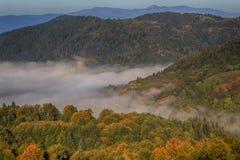在谷的雾在山 免版税库存照片