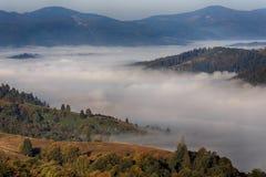 在谷的雾在山 库存图片