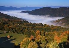 在谷的雾在山 图库摄影