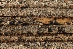 在谷仓的边的木板条 免版税库存照片