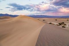 在豆科灌木平的沙丘的日落在死亡谷国家公园,加利福尼亚,美国 免版税库存照片