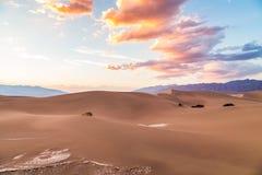 在豆科灌木平的沙丘的日落在死亡谷国家公园,加利福尼亚,美国 免版税库存图片