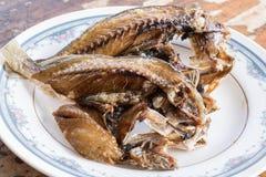 在象油煎的咸鱼的泰国人 免版税图库摄影