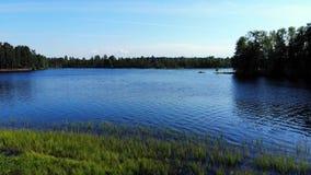 在象草的低地和蓝色湖的空中飞行 股票视频