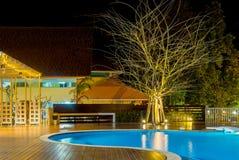在豪华加勒比,热带手段的游泳池在晚上,黎明时间 免版税库存图片