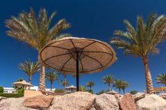 在豪华旅馆, Sharm El谢赫,埃及靠岸 库存图片
