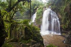 在豪华的热带森林植物群落中的马鞋子瀑布 库存照片