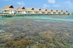 在豪华水别墅附近的珊瑚礁 图库摄影