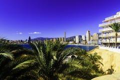 在贝尼多姆西班牙的全景的背景的棕榈树有摩天大楼和山的 库存照片