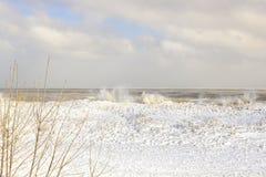 在贫瘠分支之外的冰冷的密执安湖波浪在芝加哥 免版税库存图片